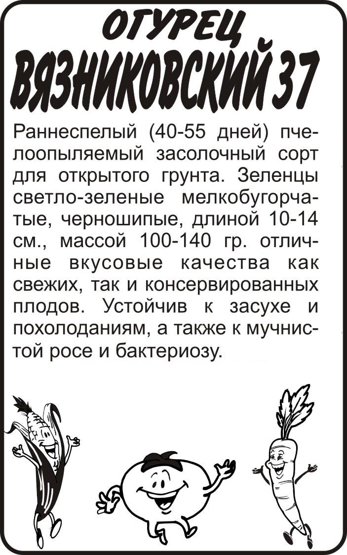 Огурец Вязниковский 37/Сем Алт/бп 0,5 гр.