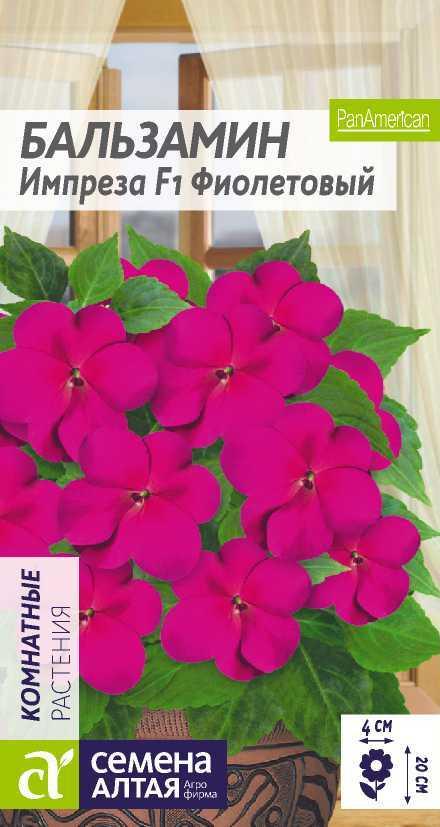 Цветы Бальзамин Импреза Фиолетовый/Сем Алт/цп 5 шт.