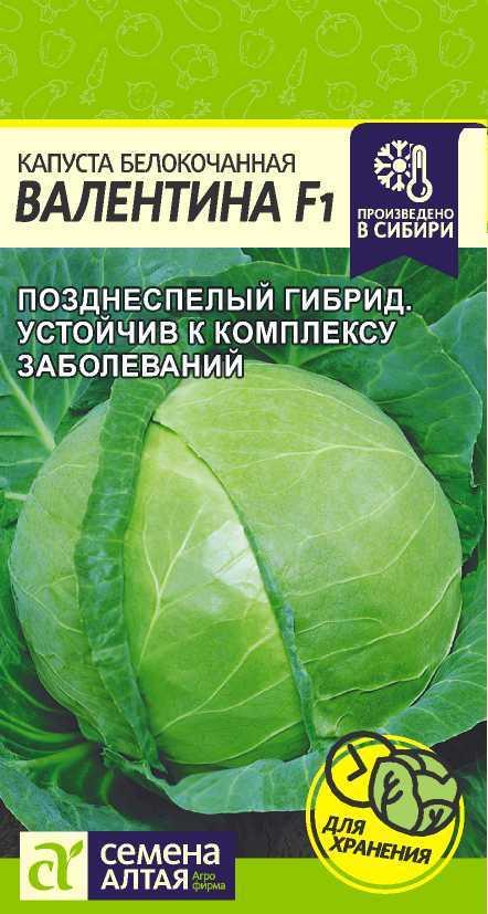 Капуста Валентина F1/Сем Алт/цп 0,1 гр.