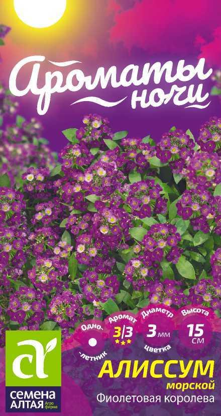 Цветы Алиссум Фиолетовая Королева/Сем Алт/цп 0,1 гр. Ароматы ночи