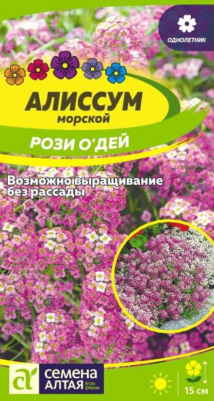 Цветы Алиссум Рози О`Дей/Сем Алт/цп 0,1 гр.