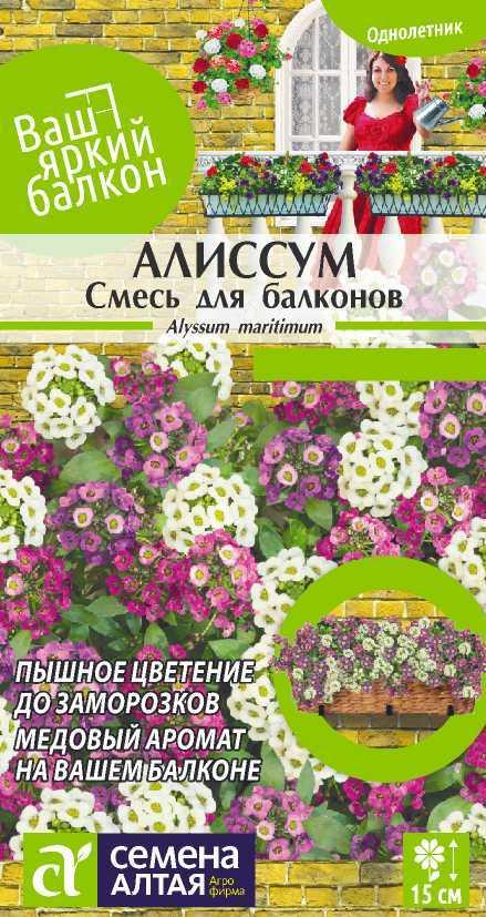 Цветы Алиссум Смесь для балконов/Сем Алт/цп 0,2 гр. Ваш яркий балкон