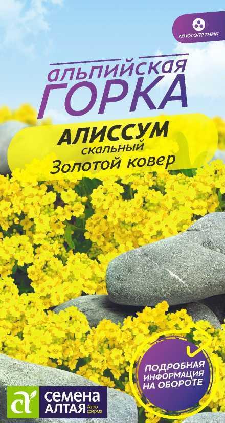 Цветы Алиссум Золотой Ковер/Сем Алт/цп 0,1 гр. многолетник Альпийская горка