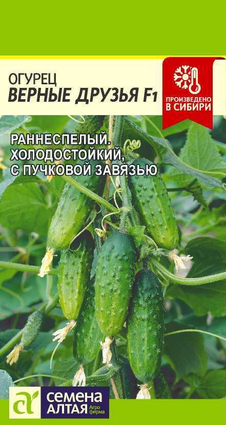 Огурец Верные друзья F1/Сем Алт/цп 5 шт.