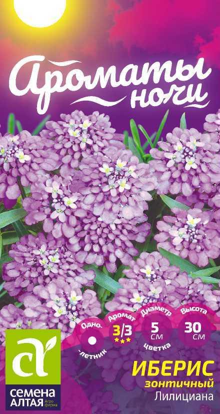 Цветы Иберис Лилициана зонтичный/Сем Алт/цп 0,3 гр .