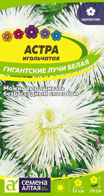 Астра Гигантские лучи Белая/Сем Алт/цп 0,2 гр.