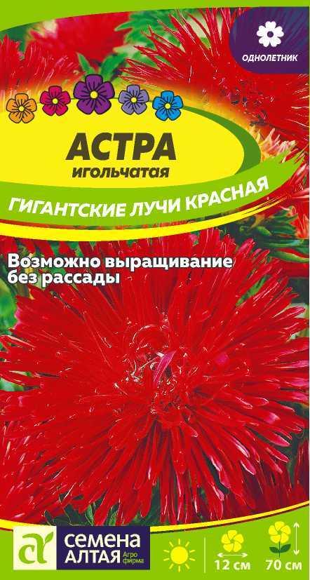 Астра Гигантские лучи Красная/Сем Алт/цп 0,2 гр.