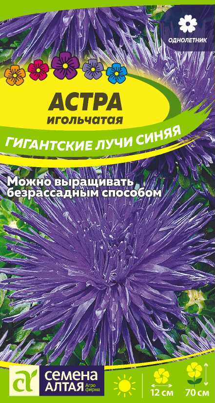 Астра Гигантские лучи Синяя/Сем Алт/цп 0,2 гр.