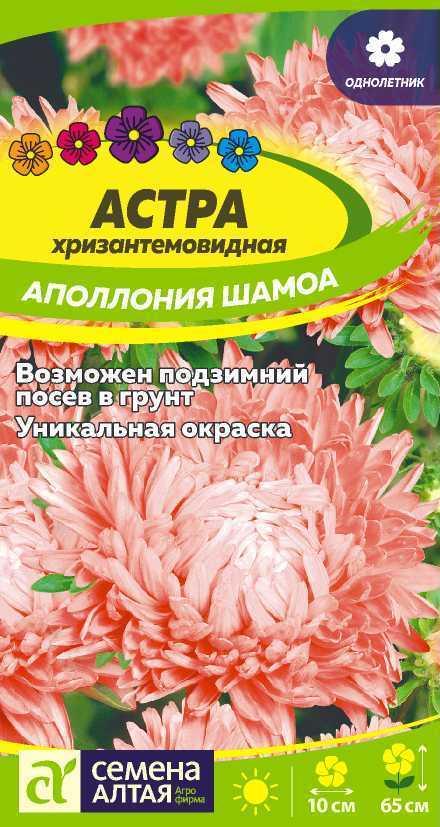 Астра Аполлония Шамоа/Сем Алт/цп 0,2 гр.