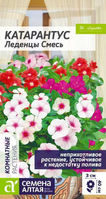 Цветы Катарантус Леденцы/Сем Алт/цп 0,05 гр.