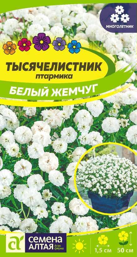Цветы Тысячелистник Белый жемчуг/Сем Алт/цп 0,1 гр. многолетник